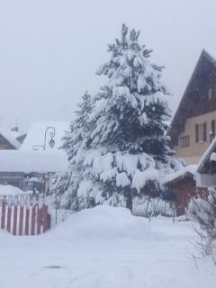 La neige est arrivée !!!!